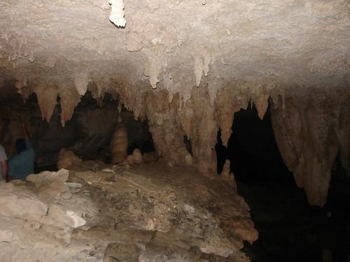 マンモス・ケーブ国立公園の画像 p1_20