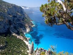 My dear gulf (LucaPicciau) Tags: sardegna blue sea sun green praia beach spectacular daylight mare sardinia gulf blu playa salinas winner sole luce cala golfo ginepro baunei lupi guglia orosei specland lupi75 mywinners