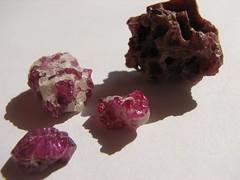 Ruby (jaja_1985) Tags: macro closeup rocks minerals mineral ruby rubies