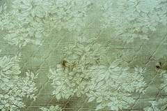 found floral - by Duchamp