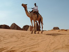 -Camel- (Vt Hassan) Tags: africa people animal ancient pyramid sudan camel pyramids nubia archeological sites bedouin nubian bajrawia