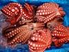 Octopus (hazy jenius) Tags: food fish japan catchycolors colorful asia market tsukiji octopus 日本 東京 tokyo