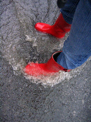 0110 - 5July06 (a.pic.a.day/proud.of.my.day) Tags: water rain x 365 rainboots onepictureaday project365 365days apicaday onephotoperday redrainboots 365project httpapicadayblogwordpresscom