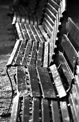 Patiently Waiting (Hoffmann) Tags: park blackandwhite bw 2004 bench amusement pennsylvania pa theme amusementpark n80 benches nikonn80 ligonier themepark idlewild idlewildpark kodak400tx ligonierpa tag123bw