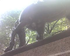 Paul Revere's Horse (Heather R Davis) Tags: statue boston paulrevere phikap horsepenis phikappasigma grandchapter
