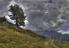 Over The Hill (lynne bernay-roman) Tags: road mountains tree clouds dark switzerland hill hdr nendaz billowing