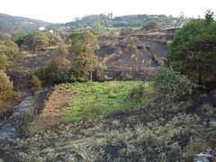 ArdeGaliza060811 080 (mxks_web) Tags: fire galicia galiza incendio desastre resultado oquequeda wwwmuxicascom