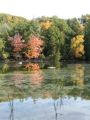 Weimers Lake - Mill Pond