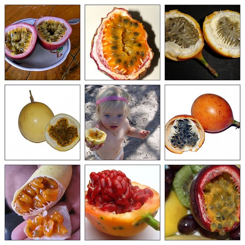 百香果 Passion Fruit