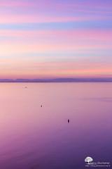 Dgraduellement (photosenvrac) Tags: mer pastel violet zen mauve collioure paysage portvendres thierryduchamp