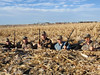Nebraska Waterfowl Hunting 16