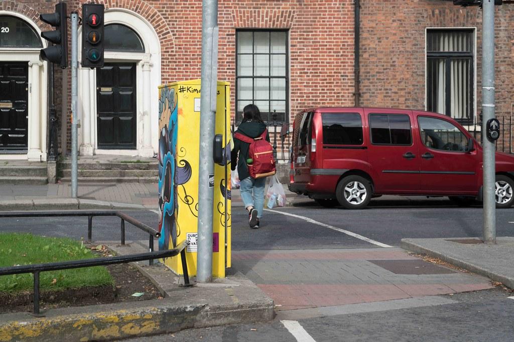 """""""Monty"""" By Kim Bale [Baggot Street Dublin Canvas Project 2015] REF-10805492"""