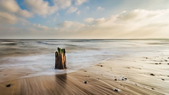 What Remains (framboise_sjb) Tags: wood longexposure sea seascape zeiss landscape suffolk long exposure moody decay northsea ethereal derelict southwold atmospheric eastanglia groynes walberswick carlzeiss 2015 suffolkcoast zeissdistagon zeissdistagon18mm zeissdistagon3518mm