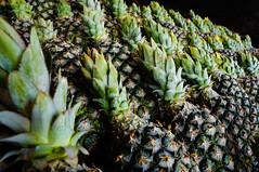 (kktibinha) Tags: shopping market feira mercado porto mercadomunicipal farmer compras pineaple abacaxi