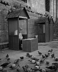 #eminonu #istanbul #bw #monochrome #fujifilmx100t #fujifilm #instalife_shot #travellers #travel #vacation #street #streetphotography (Mustafa Selcuk) Tags: square pigeons istanbul squareformat birdman iphoneography instagramapp uploaded:by=instagram