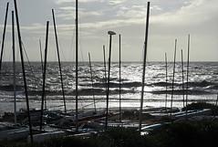 La-Bernerie-en-Retz (Loire-Atlantique) (sybarite48) Tags: sunset sea mer france boot boat mar zonsondergang meer barca tramonto mare barco zee bateau  deniz brace   coucherdesoleil d puestadelsol   tekne morze    loireatlantique      labernerieenretz