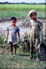 Vietnam Countryside Jan 1968 by HG Waite (manhhai) Tags: vietnamese waite vietnam 1967 tet bienhoa tetoffensive macv trangbom nguyencaoky advisoryteam98 ductu anxuan hoephoa vuonngo hiephoa