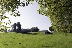 IMG_2891-Modifier (mycenium) Tags: panorama belgium belgique farm bow land prairie chateau region campagne brabant ferme bois vache wallon wallonie grez grezdoiceau laurensart wallone doiceau