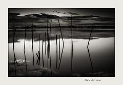 Paix du soir (hyver31) Tags: eau couleurs soir bâtons 2013 etangarnel