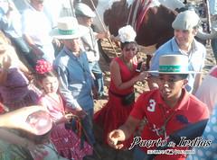 Puerto de Indias en El Rocío