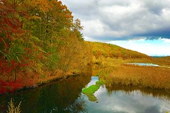 Autumn Reflections (Scorpiol13) Tags: autumn trees usa fall nature water leaves river season landscape canal colorful massachusetts foliage hillside