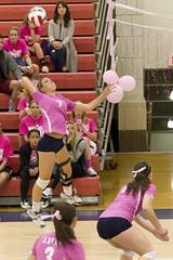 DAVE2588 (David J. Thomas) Tags: sports athletics women volleyball arkansas pioneers awareness breastcancer scots batesville pinkout lyoncollege crowleysridgecollege