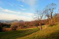 hills (Wolfgang Binder) Tags: autumn sky fall grass zeiss landscape nikon scenery horizon hill hills distagon d7000 distagont3518