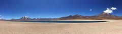 Laguna Miscanti (Mono Andes) Tags: chile panorama andes desierto altiplano volcan volcanoe lagunamiscanti punadeatacama reservanacionallosflamencos volcnmiscanti
