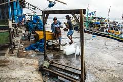 IKAN (eamediasyn) Tags: laut perahu ikan lampung nelayan kapal perikanan tengkulak gudanglelang