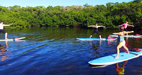 11_30_15 Paddleboard Yoga in Lido Mangroves FL 09