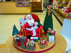 All rights reserved Collette Rawlinson (Collette Rawlinson) Tags: christmas station cake liverpool central fairy rollers 2015 scouse