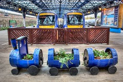 Choo-Choo! (D-W-J-S) Tags: dundee railway station platform train plant pot barrels