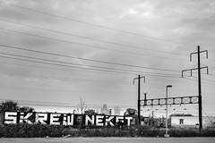 Skrew & Nekst (mike ion) Tags: philadelphia philly pa graffiti roller skrew msk nekst irak