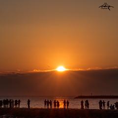 初日の出 2017 - RISING SUN (Greg Tokyo) Tags: 東浪見 初日の出 japan chiba sunrise newyear sun olympics surf sea bird