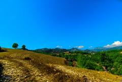 Osmaniye - Kadirli - Killik Sırtı (Oruçbey Köyü) (Street Parrot) Tags: yellow landscape color nature blue beautiful green osmaniye kadirli doğa pentax k10d manzara tamron 1024mm