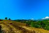 Osmaniye - Kadirli - Killik Sırtı (Oruçbey Köyü) (omardaing) Tags: yellow landscape color nature blue beautiful green osmaniye kadirli doğa pentax k10d manzara tamron 1024mm