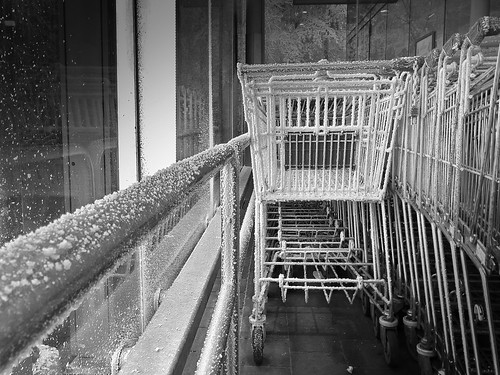 deep frozen shopping carts