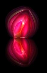 Onion Art (photonsdanslaboite) Tags: d7000 nikon50mmf14 photonsdanslaboite oignons onion vegetables legumes