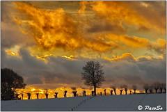 Roncesvalles, atardecer de invierno (PacoSo) Tags: roncesvalles invierno crepúsculovespertino atardecer caminodeloscanónigos caminodesantiago navarra pacoso
