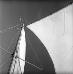101959-10 (ndpa / s. lundeen, archivist) Tags: nick dewolf nickdewolf october bw blackwhite photographbynickdewolf 1959 1950s film 6x6 mediumformat monochrome blackandwhite capecod provincetown mass massachusetts boat sailboat sailing sail sails mast