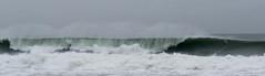 IMG_2875.jpg (sfanshier) Tags: winterwaves beach torreypinesstatebeach ocean torreypinesstatepark waves