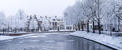 Frozen city (Wouter de Bruijn) Tags: fujifilm xt1 fujinonxf90mmf2rlmwr middelburg urban landscape nature architecture water ice snow city cityscape panorama panoramic pano outdoor trees frost hoarfrost cold netherlands holland dutch weather