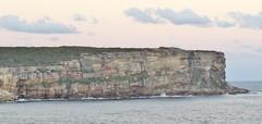 Voyager Of The Seas  Sydney Harbour 2017 (hytam2) Tags: voyageroftheseas 2017 sydney sydneyharbour northhead royal caribbean international royalcaribbean royalcaribbeaninternational royalcarribean