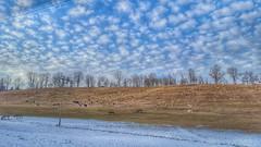 Pecorelle e Pecorelle (! . Angela Lobefaro . !) Tags: landscape earthcapture ivebeeneverywhereman rural biellese biella piemonte visitpiedmontitaly valdengo flock shepherd puffyclouds clouds cloudporn nuages fav10 fav20 wolken schäfchen