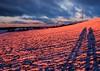 sunset glow (claudia.kiel) Tags: deutschland germany schleswigholstein bungsberg berg hügel hill winter schnee snow sonnenuntergang sunset sunsetmood schatten shadow wolkenlandschaft wolken clouds cloudscape dämmerung twilight landschaft landscape abendstimmung abendleuchten