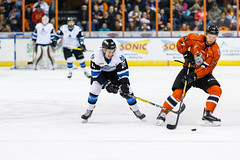 "Missouri Mavericks vs. Wichita Thunder, February 3, 2017, Silverstein Eye Centers Arena, Independence, Missouri.  Photo: John Howe / Howe Creative Photography • <a style=""font-size:0.8em;"" href=""http://www.flickr.com/photos/134016632@N02/32591261871/"" target=""_blank"">View on Flickr</a>"