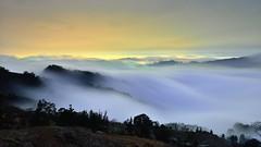 馬拉邦山~雲瀑~  Cloud waterfall (Shang-fu Dai) Tags: 台灣 taiwan 苗栗 泰安鄉 馬拉邦山 clouds nikon d800e landscape 夜景 戶外 雲 雲瀑