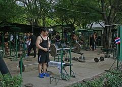 Strong Men (Wolfgang Bazer) Tags: bangkok thailand lumphini park weight lifting gewichtheben men männer