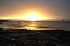 Sunset at Arthur River Tasmania (Joybelle007) Tags: nikon d90 sunset arthurriver tasmania beautiful water beach logs australia