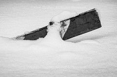 "Safety Barrier After Snow Storm, 15 March 2017 - Montreal, Quebec, Canada (Photographie Alexi ""Alvin"" Dagher Photography) Tags: alvin bw montreal nopeople outdoors photographer photography quebeccanada bandw barelyvisible barrier blackandwhite bnw engulfed horizontal landscape march152017 monochrome noone nobody photos pics pictures safety snow snowstorm snowedin snowscape stickingout storm sunken white winter wood wooden ©alexidagher quebec canada"